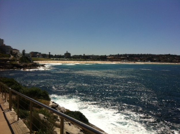 Coogee to Bondi walk (3)