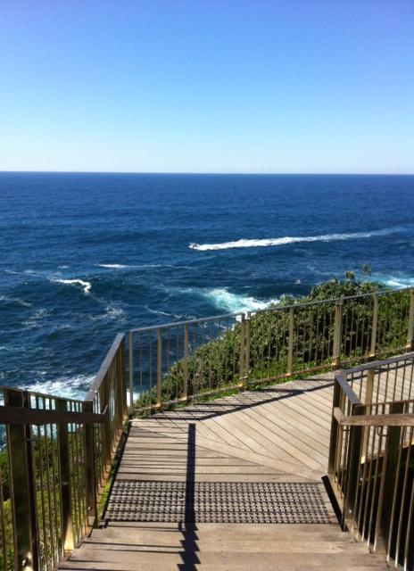 Coogee to Bondi walk (5)
