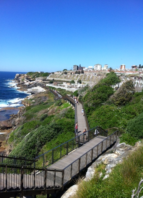 Coogee to Bondi walk (6)