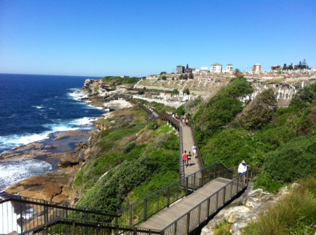 Coogee to Bondi walk (7)