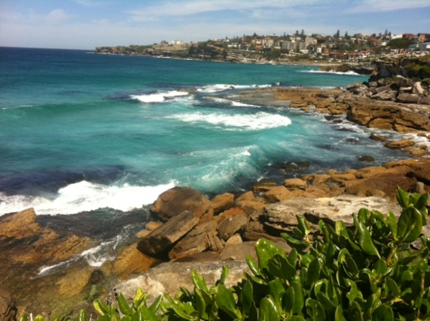 Coogee to Bondi walk (8)