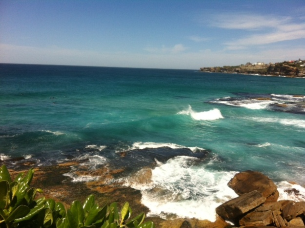 Coogee to Bondi walk (9)
